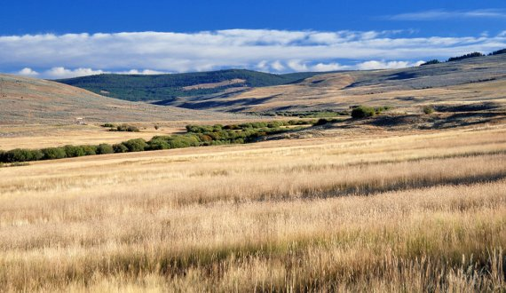 Montana ranch for sale with an beautiful views