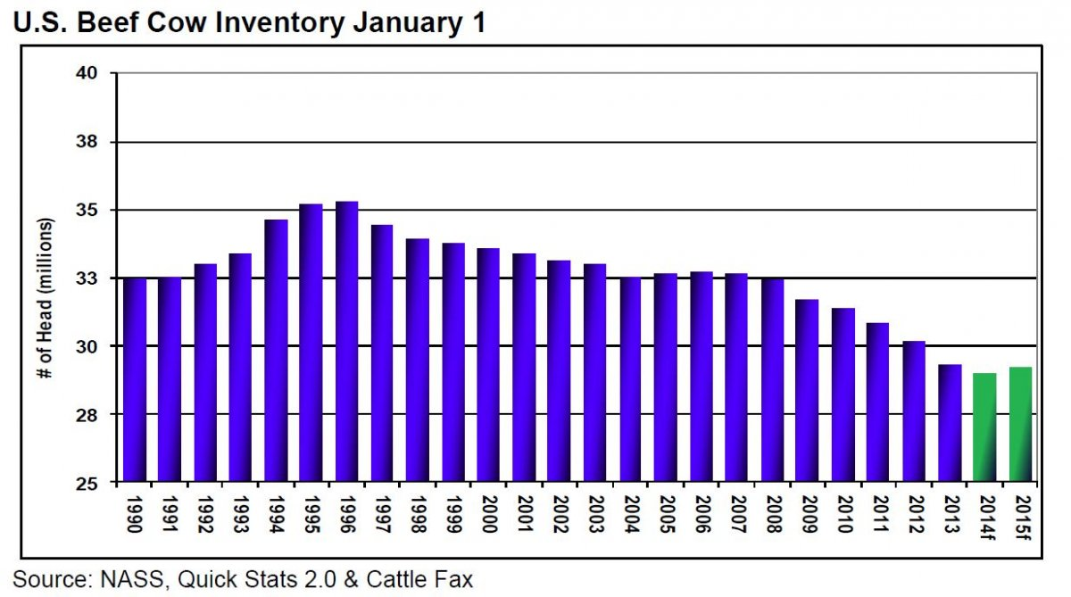 U S Cattle Inventory Cattle Market Summary ...