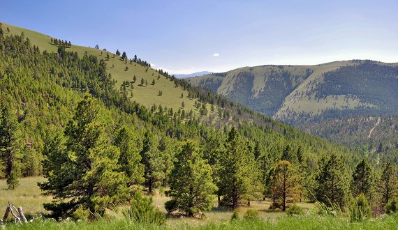 Montana land for sale listed by Swan Land Company