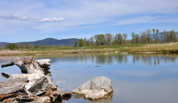 Montana land for sale with a water source