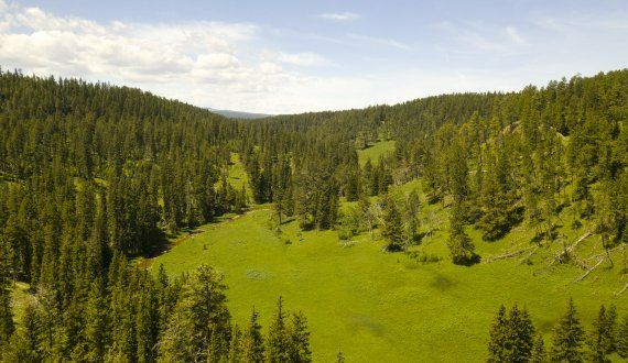 Land for sale near Deer Lodge, Montana