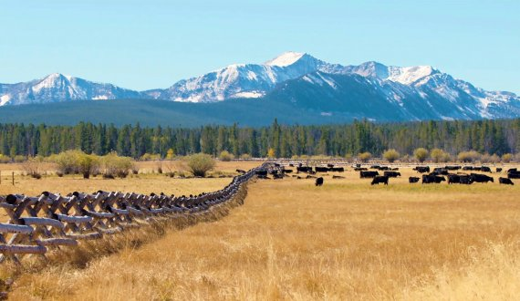 Stunning views on this Montana ranch for sale