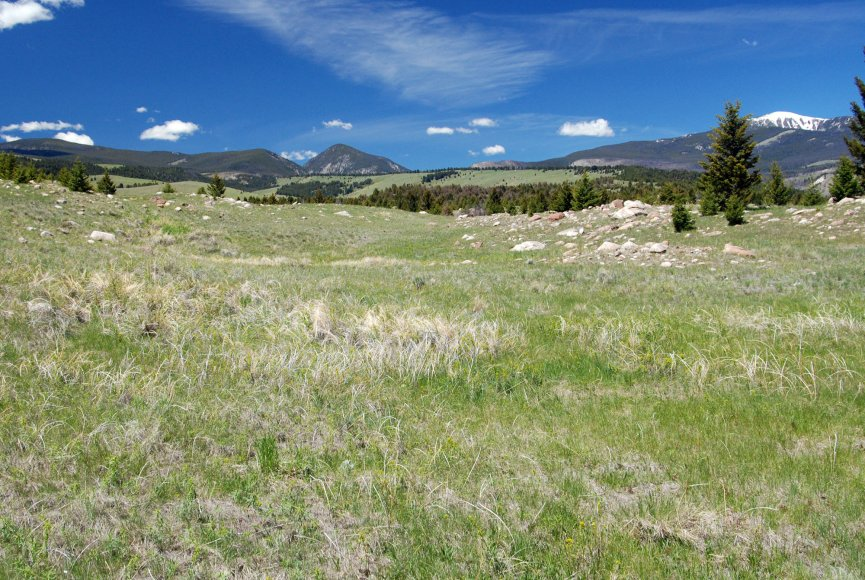 Land for sale in gorgeous Montana