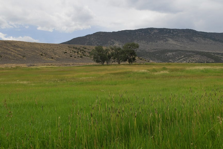 Lush meadows on this Utah ranch for sale
