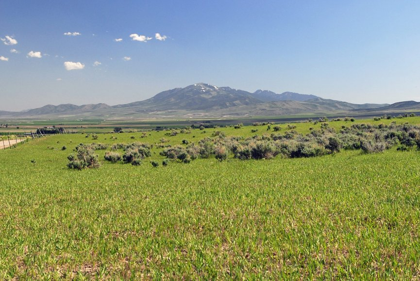 Gorgeous land for sale in Idaho