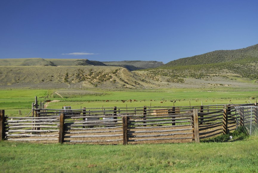 Pens set up to ease the transition for livestock on this Utah property for sale