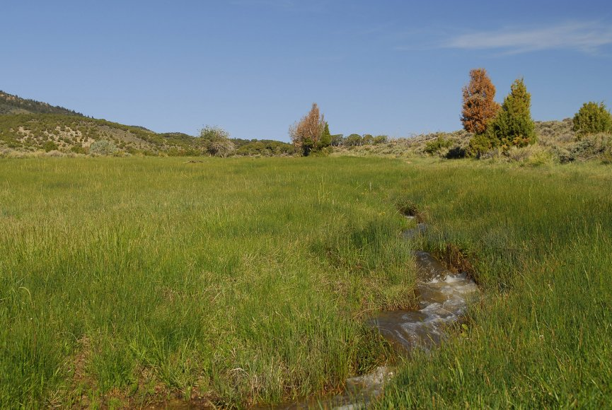 Water available for grazing livestock on this Utah land for sale