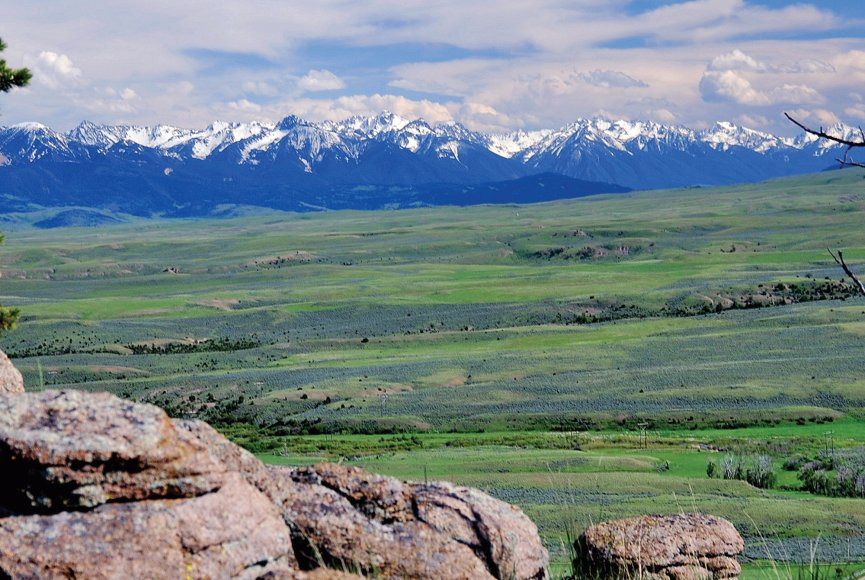 Land for sale in Montana attracts wildlfie
