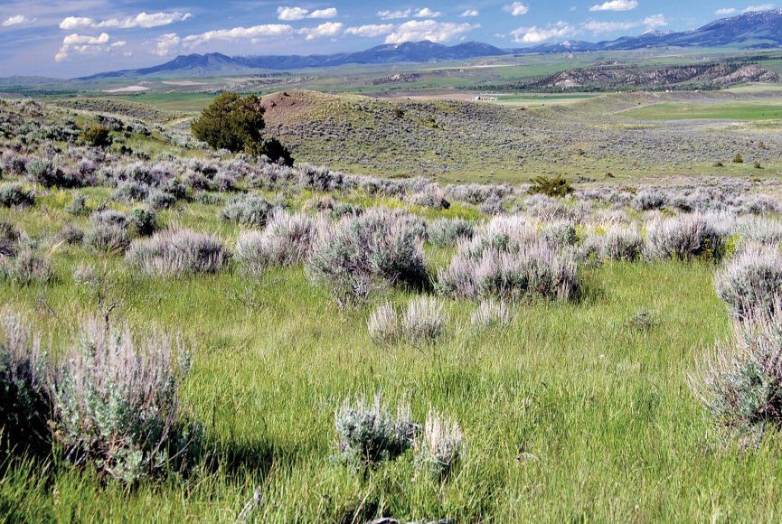Sagebrush dot the mountain landscape on this Montana property for sale