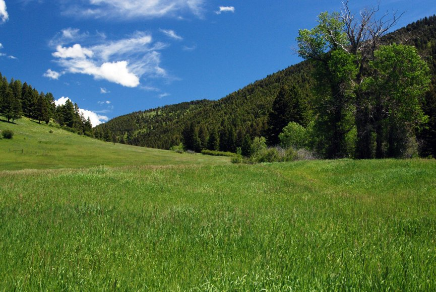 Rolling grassland for sale on this Montana property for sale