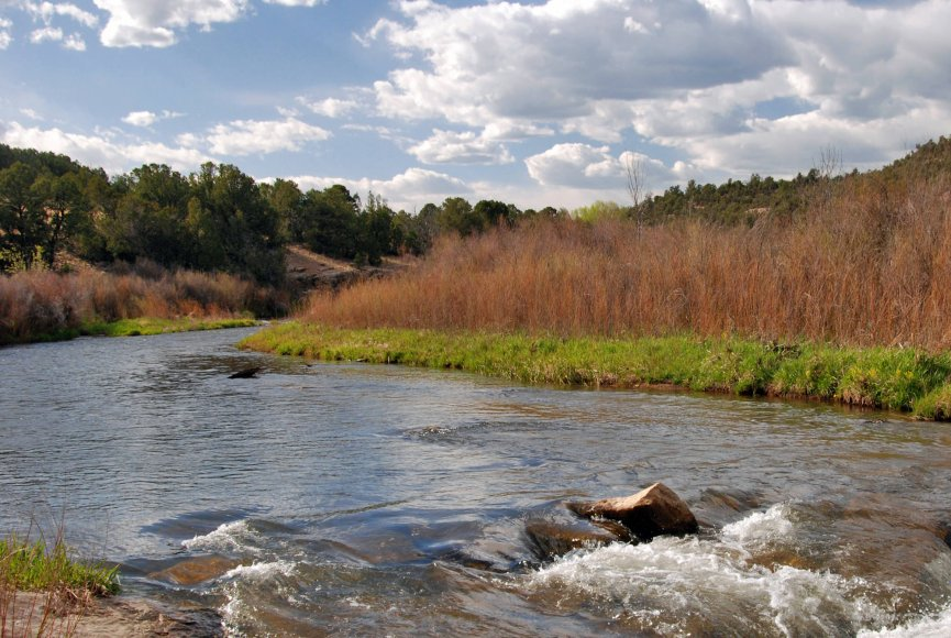 A grand river on this New Mexico property for sale