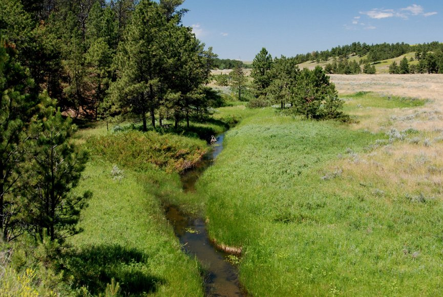 Water running through this horse ranch for sale in Montana