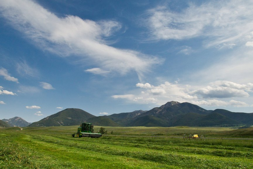 Productive fields for crops on this Montana ranch for sale