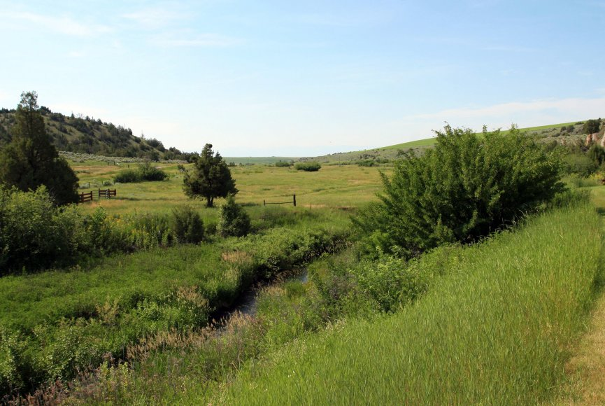 Land for sale in Montana has abundant opportunities