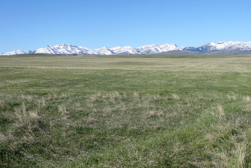 Room to roam on this Montana ranch for sale