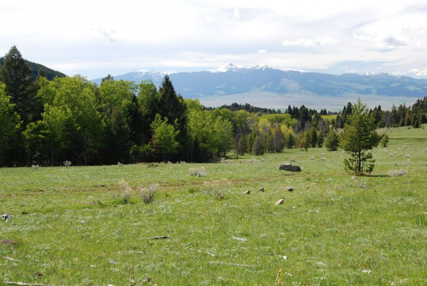 Montana land for sale with multi use opportunites