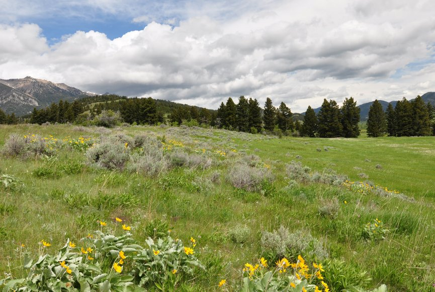 Mountain property for sale in Montana near Bozeman