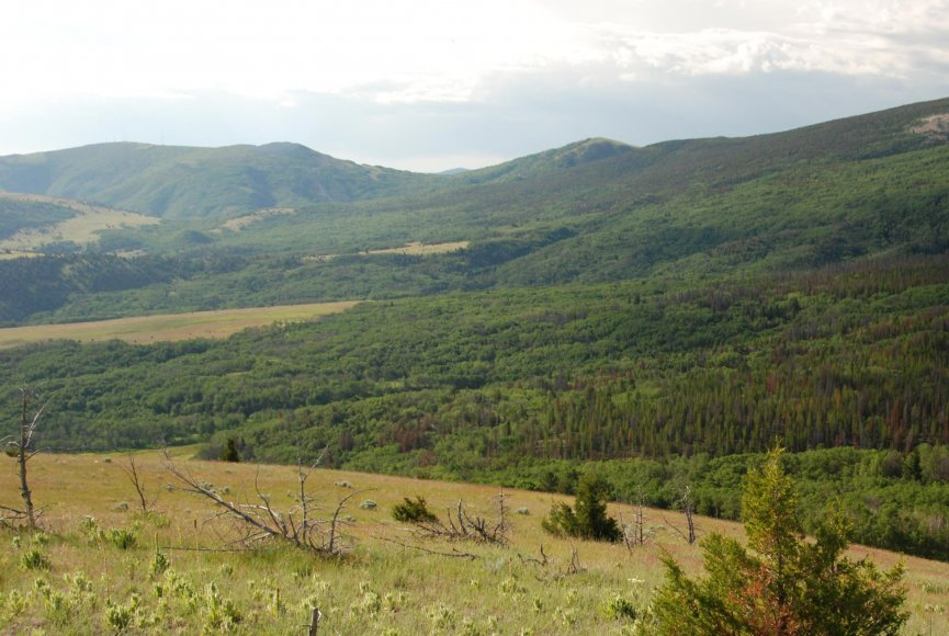 Montana property for sale with expansive acerage