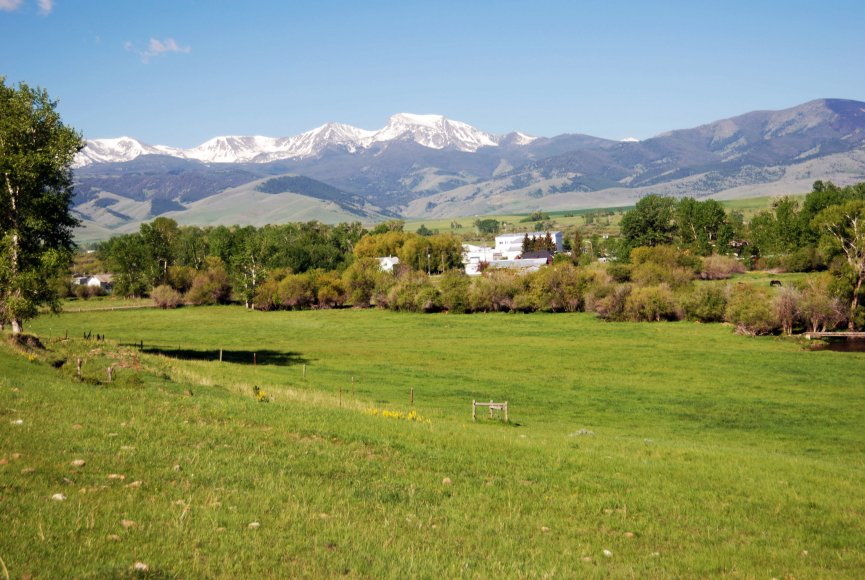 Beautiful green grass on this Montana property for sale