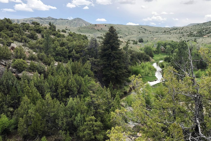 Wildlife haven on this Wyoming ranch for sale