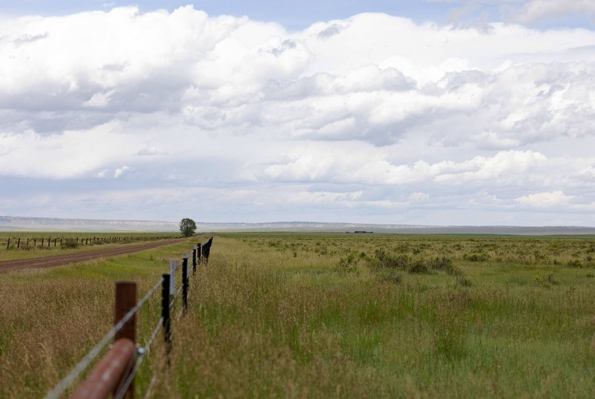 Fresh air on this Montana ranch for sale