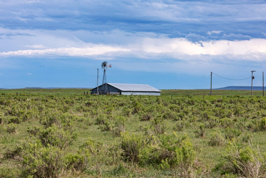 Bison ranch for sale in Montana