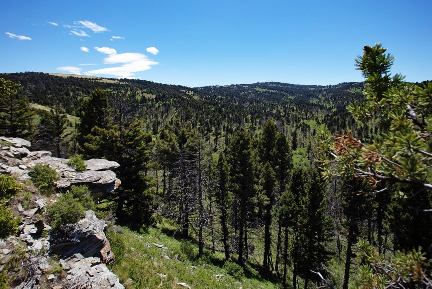 Ranch for sale near Bozeman is a great place to explore your possibilities