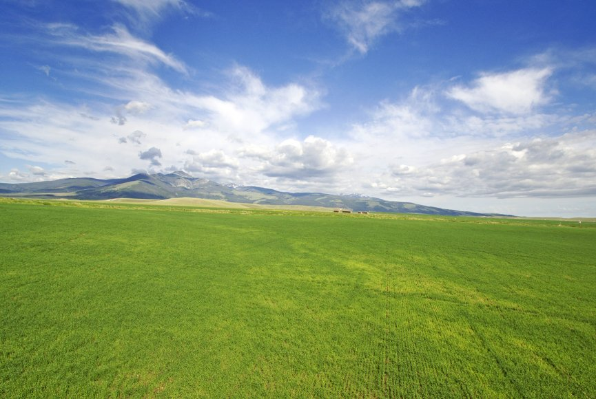 Land as far as the eye can see is prime land for sale in Montana