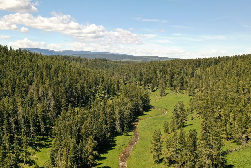 Ranch for sale in Montana has a beautiful landscape