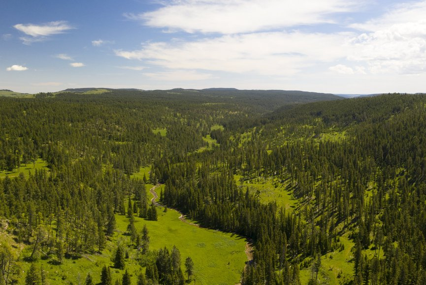 Birds eye view of this beautiful Montana ranch for sale