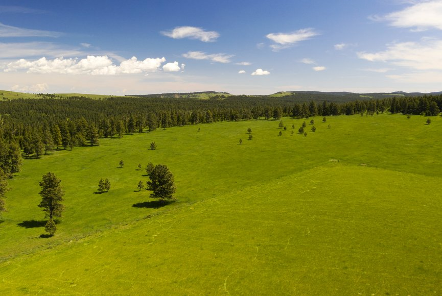 Ranch for sale in Montana has space to roam