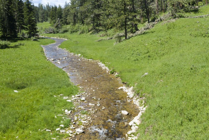Water on this Montana ranch for sale