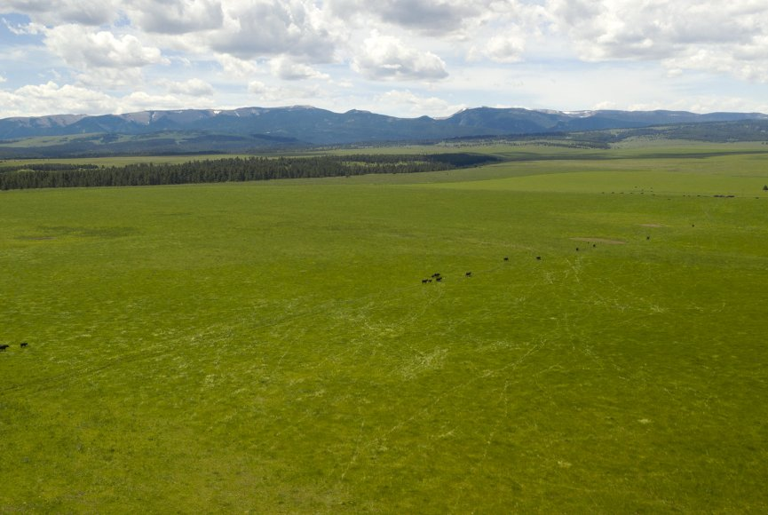 Montana ranch for sale with plenty of elbow room