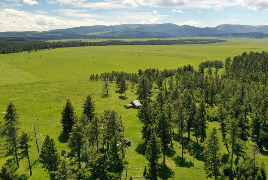 Land for sale listed by Swan Land Company