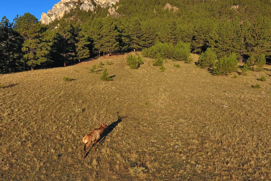 Expansive acreage available on this Wyoming property for sale