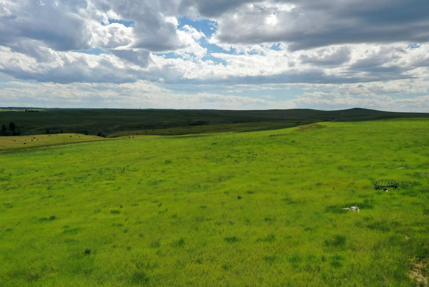 Rolling green grass on this Montana ranch for sale