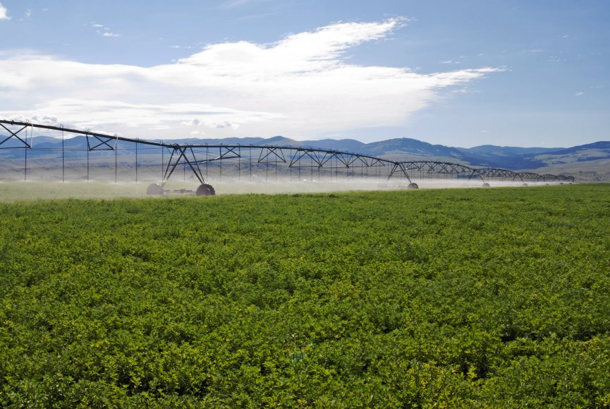 Pivots help irrigate the many acres on this Montana land for sale