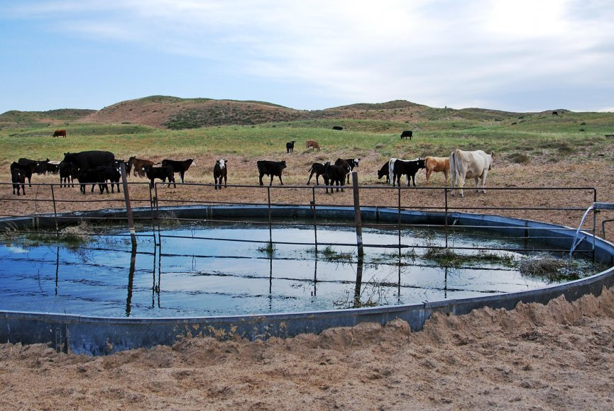 Nebraska ranch for sale is ready for the next owner