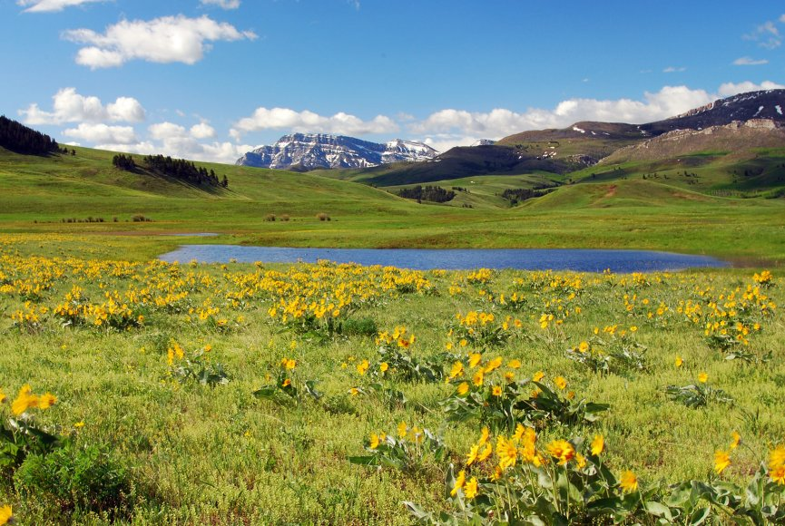 Water available on this Montana land for sale