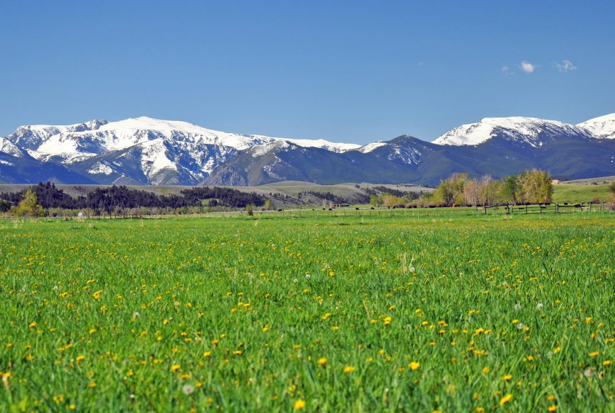 Lush meadows on this Montana ranch for sale