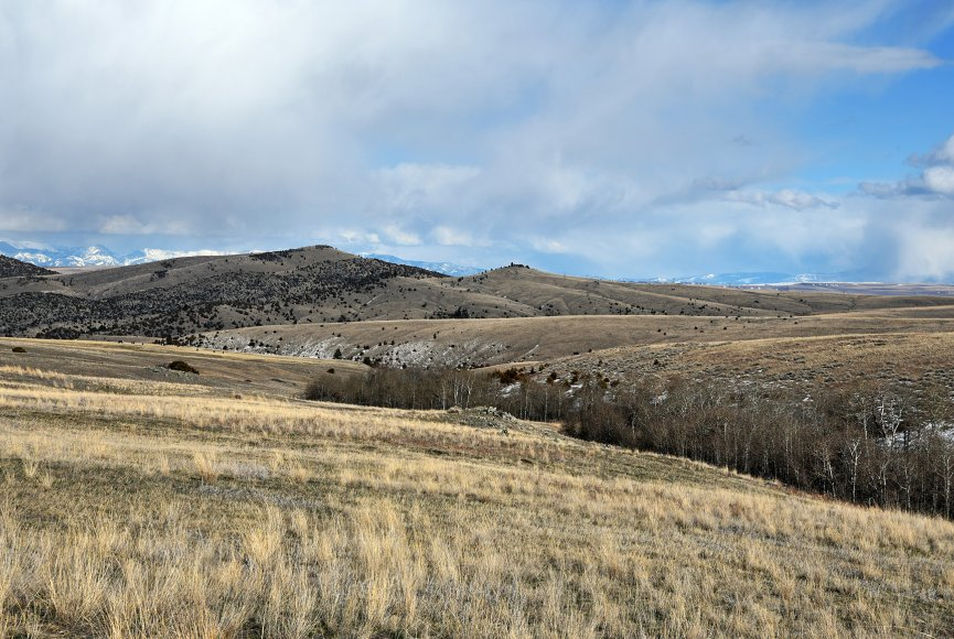 Montana land for sale is an open slate