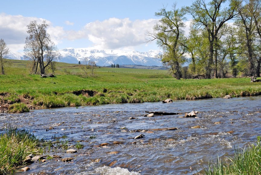 Flowing water on this Montana ranch for sale listed by Swan Land Company