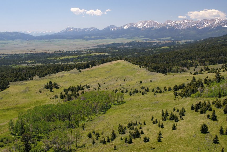 Make this exceptional Montana property for sale your own