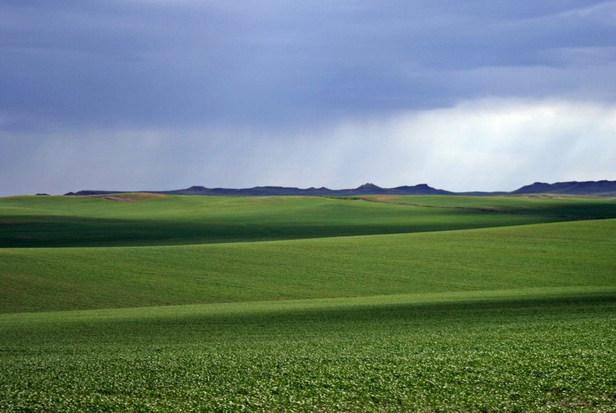 Sweeping land on this Montana property for sale
