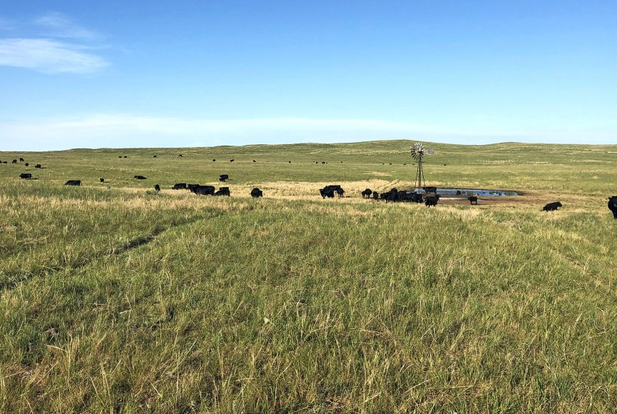 Wide open space on this Nebraska ranch for sale