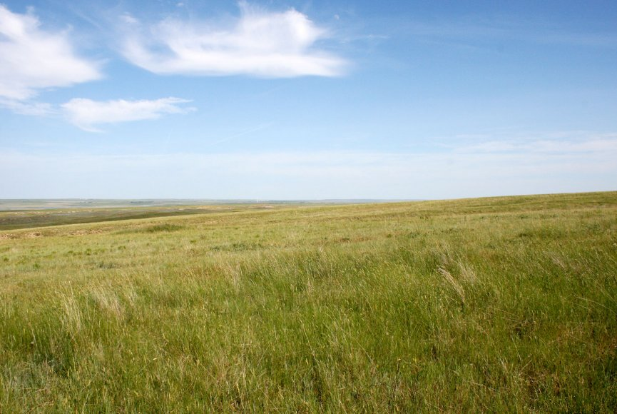 Grass is swaying on this Montana land for sale