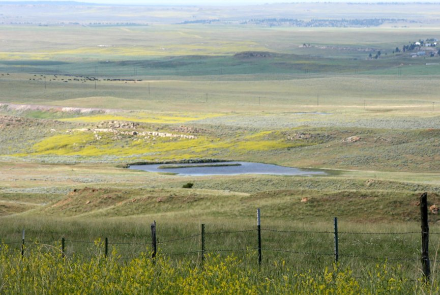 Montana property for sale with productive fields
