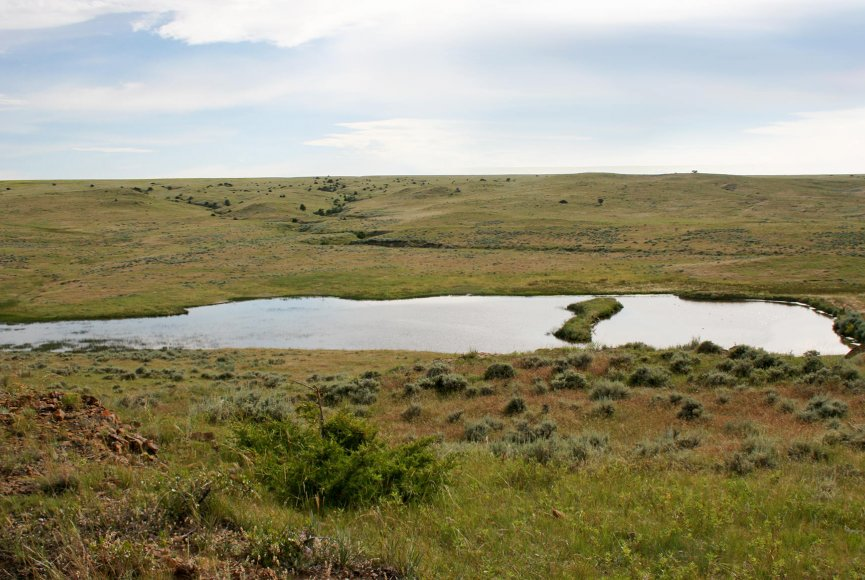 Montana ranch for sale with a lot of open space