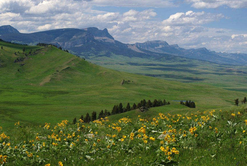 Wide open space on this Montana ranch for sale