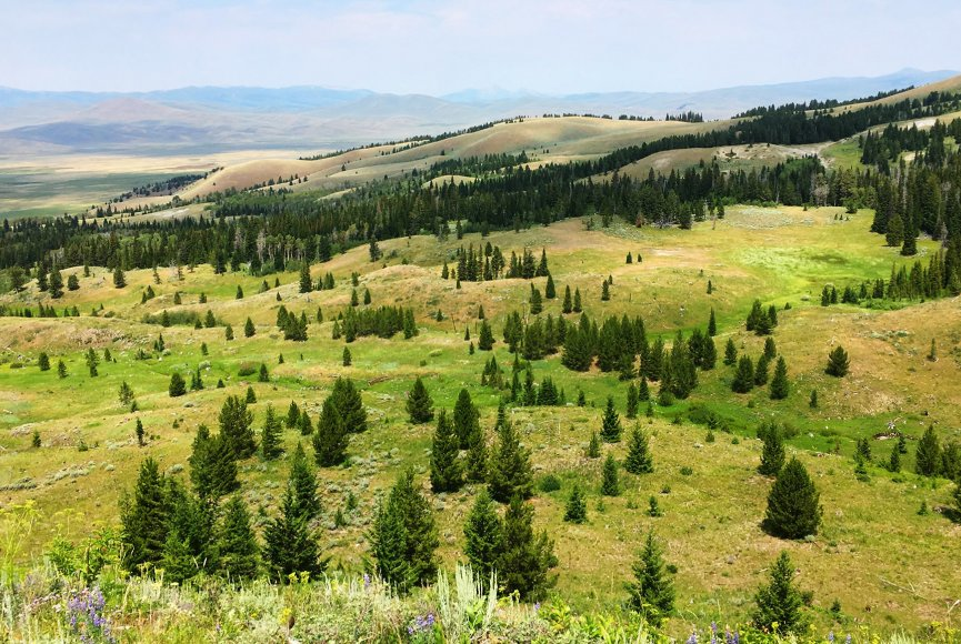 Montana ranch for sale with stunning scenery